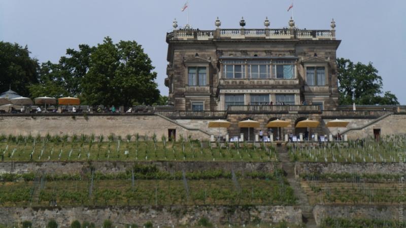 Dresden 17