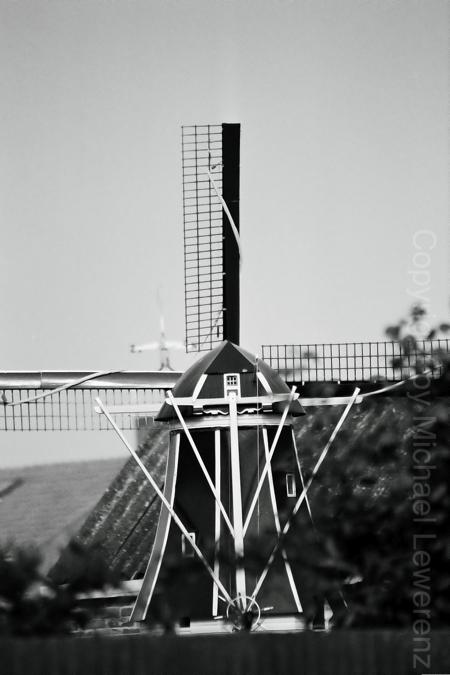 Holland 31