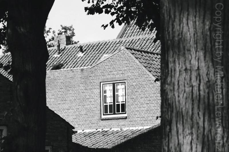 Hollan 33
